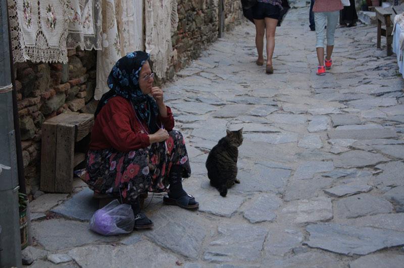 La vielle et son vieux chat (19 ans)
