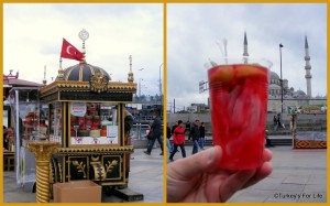 istanbul-tursu-pickles-turkish-food1-300x187