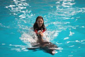 İstanbul Dolphinarium - prix musées istanbul 2020