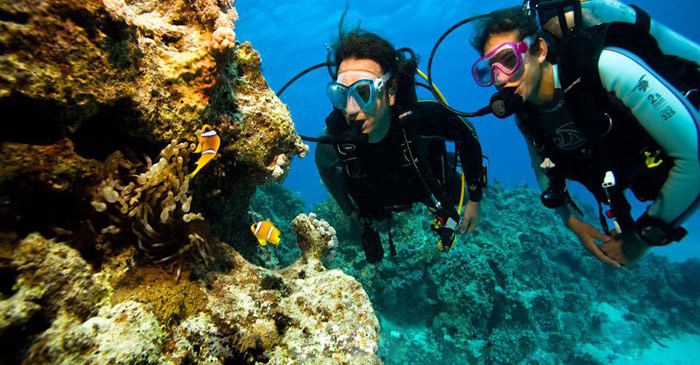plongée-Sous marine-fethiye-turquie